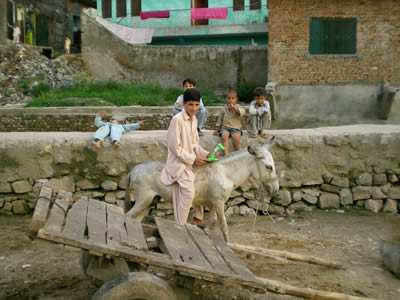 [Photo: Student using an XO while riding a donkey]