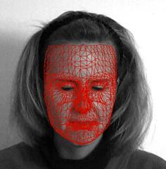 Face tracking 3D Track